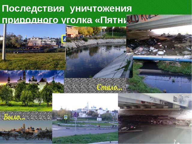 Последствия уничтожения природного уголка «Пятницкий колодец» у Кончуры