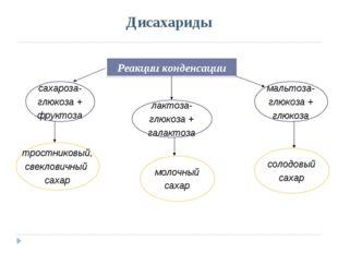 Дисахариды Реакции конденсации сахароза- глюкоза + фруктоза лактоза- глюкоза