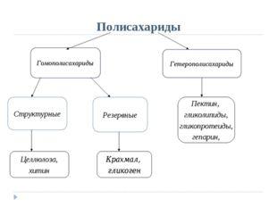 Полисахариды Гомополисахариды Гетерополисахариды Структурные Резервные Пектин