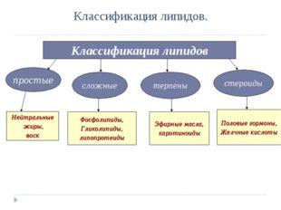 Классификация липидов. Классификация липидов простые сложные терпены стероиды