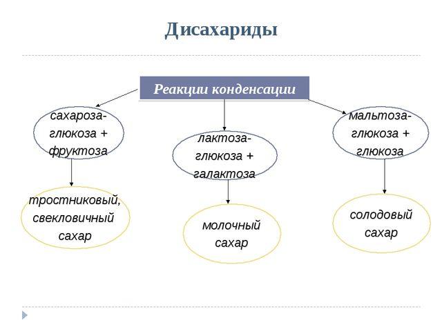 Дисахариды Реакции конденсации сахароза- глюкоза + фруктоза лактоза- глюкоза...