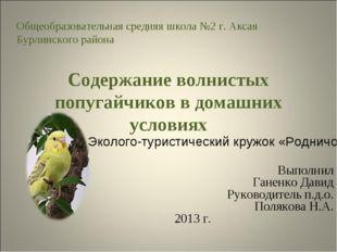 Содержание волнистых попугайчиков в домашних условиях Выполнил Ганенко Давид