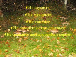 Не шумите Не мусорьте Не топчите Не ломайте ветки деревьев Не срывайте цветы