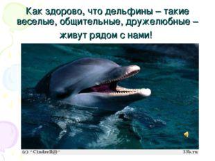 Как здорово, что дельфины – такие веселые, общительные, дружелюбные – живут р