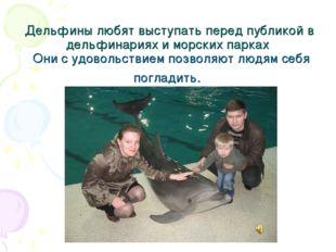 Дельфины любят выступать перед публикой в дельфинариях и морских парках Они с