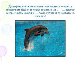 Дельфинов можно научить здороваться – махать плавником. Ещё они умеют играть