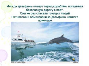 Иногда дельфины плывут перед кораблём, показывая безопасную дорогу в порт. Он