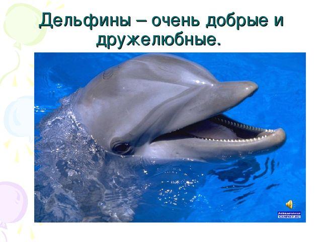 Дельфины – очень добрые и дружелюбные.