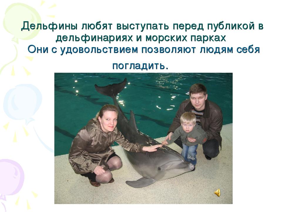 Дельфины любят выступать перед публикой в дельфинариях и морских парках Они с...