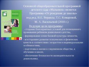 Основной общеобразовательной программой детского сада «Малышок» является П