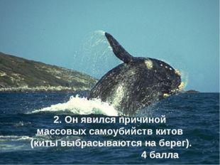 2. Он явился причиной массовых самоубийств китов (киты выбрасываются на берег