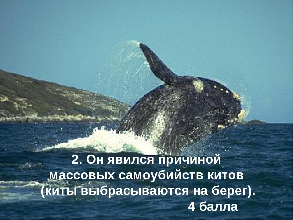 2. Он явился причиной массовых самоубийств китов (киты выбрасываются на берег...