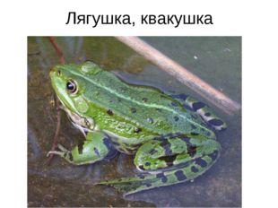 Лягушка, квакушка