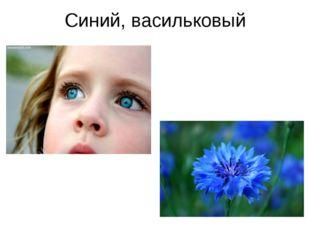 Синий, васильковый