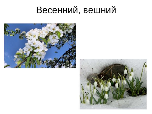 Весенний, вешний