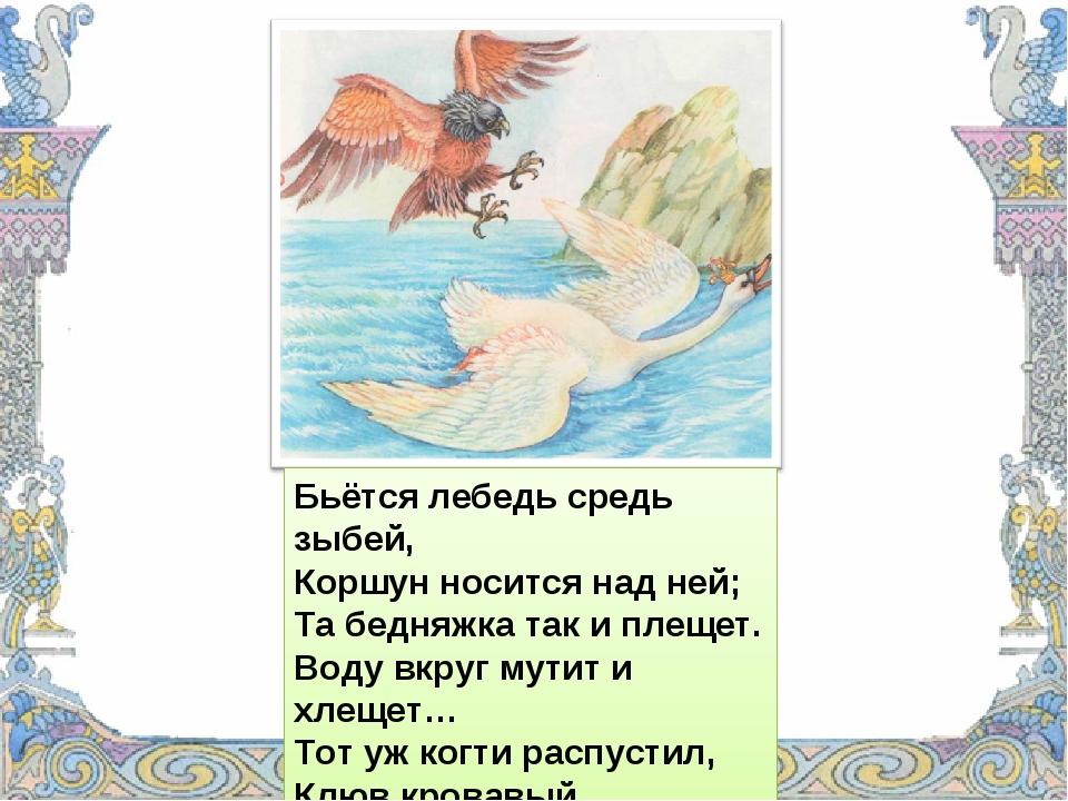 Бьётся лебедь средь зыбей, Коршун носится над ней; Та бедняжка так и плещет....