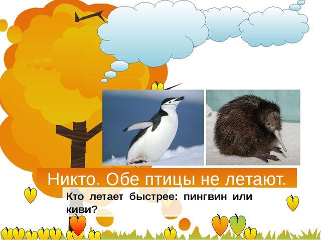 Никто. Обе птицы не летают. Кто летает быстрее: пингвин или киви?