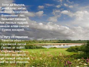 Топи да болота, Синий плат небес. Хвойной позолотой Взвенивает лес. Тенькает