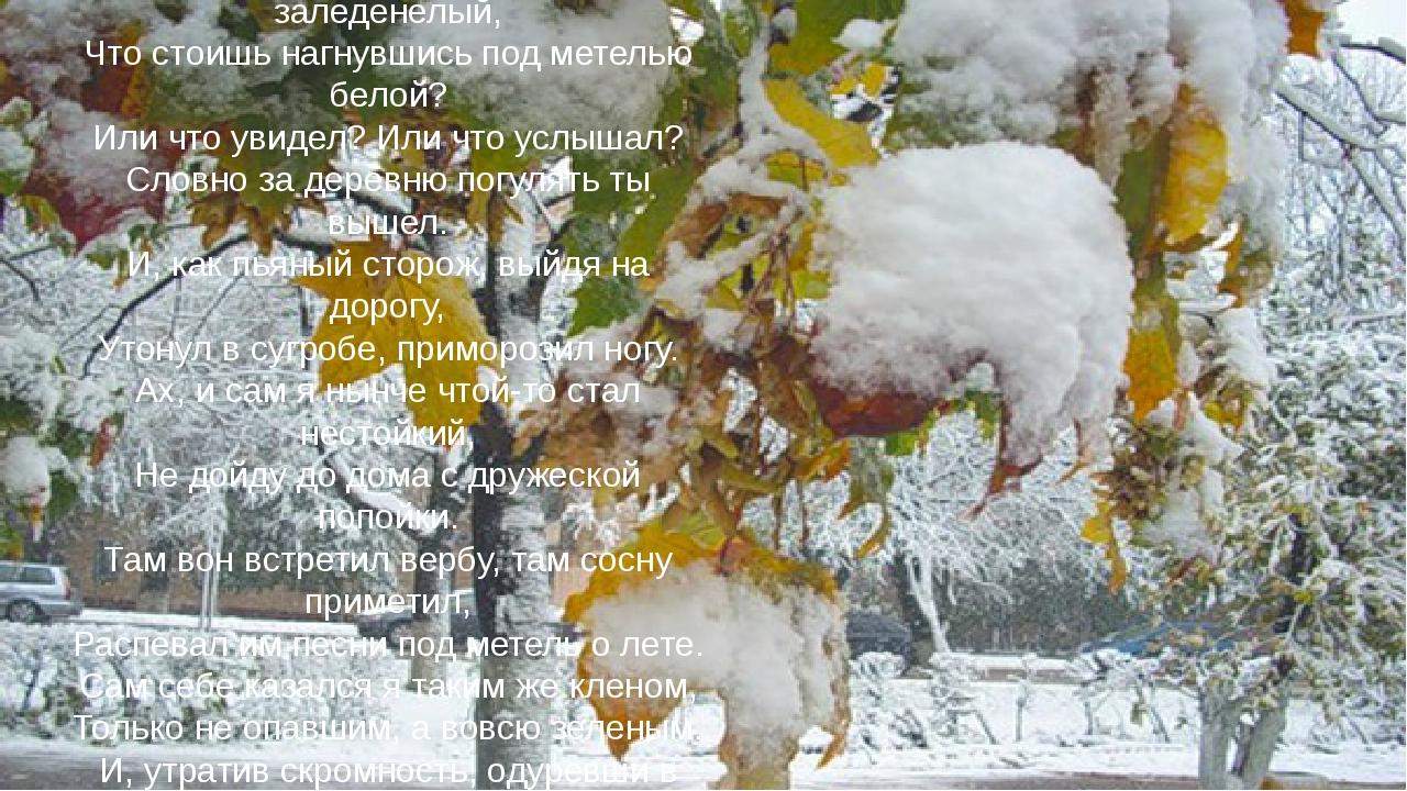 Клен ты мой опавший, клен заледенелый, Что стоишь нагнувшись под метелью бело...