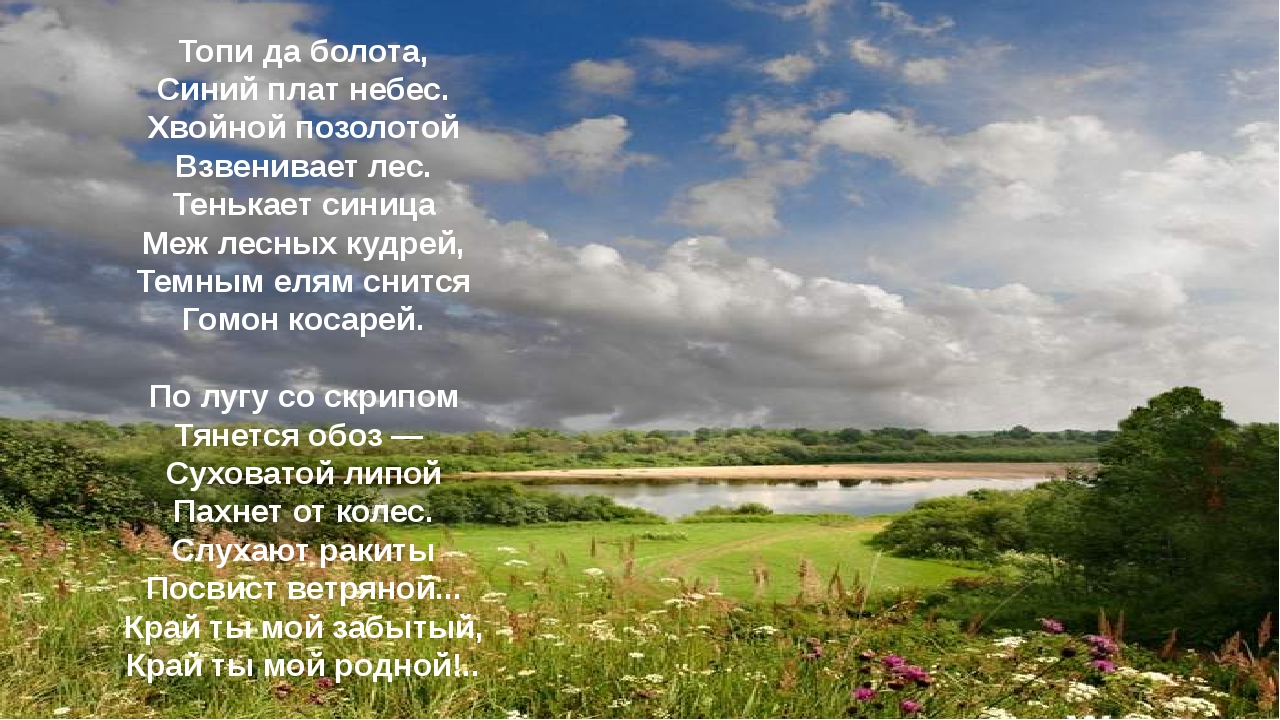 Топи да болота, Синий плат небес. Хвойной позолотой Взвенивает лес. Тенькает...