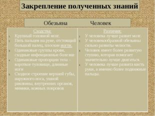 ОбезьянаЧеловек Закрепление полученных знаний Сходства: Крупныйголовной мо