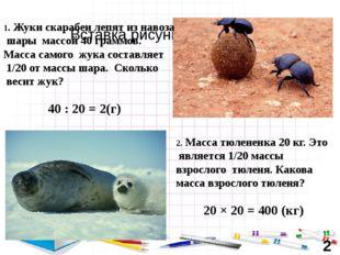40 : 20 = 2(г) 1. Жуки скарабеи лепят из навоза шары массой 40 граммов. Масса