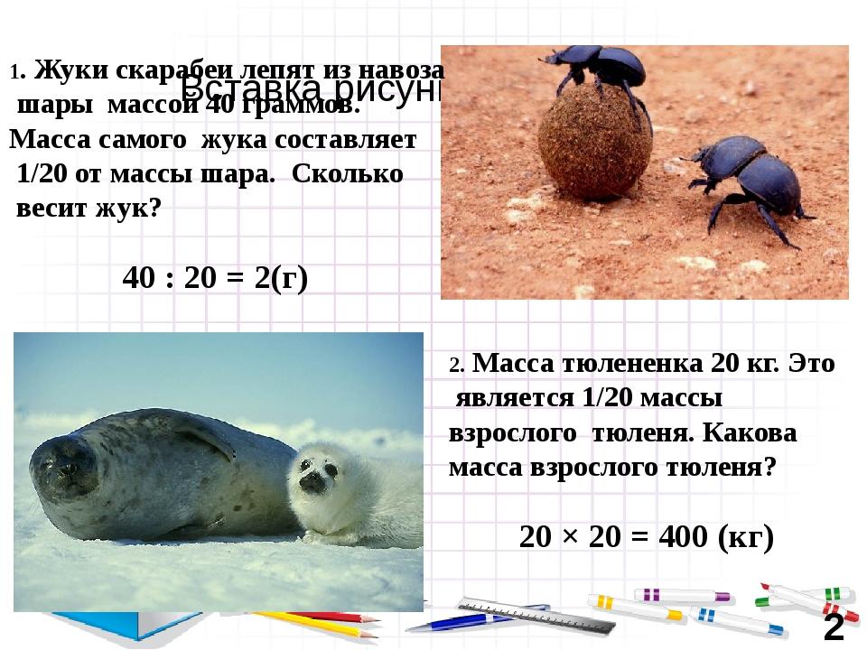 40 : 20 = 2(г) 1. Жуки скарабеи лепят из навоза шары массой 40 граммов. Масса...