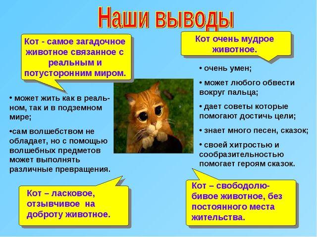 Кот очень мудрое животное. Кот - самое загадочное животное связанное с реальн...