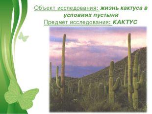 Объект исследования: жизнь кактуса в условиях пустыни Предмет исследования: К