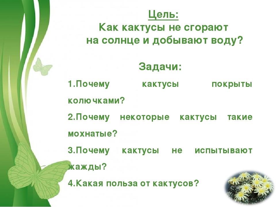 Цель: Как кактусы не сгорают на солнце и добывают воду? Задачи: Почему кактус...