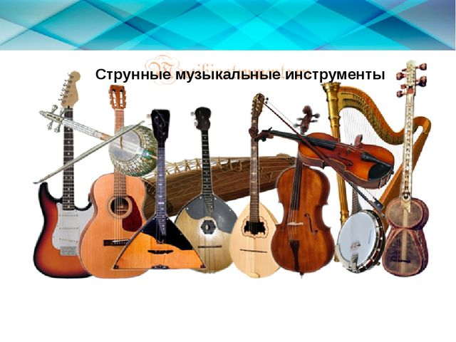 Струнные музыкальные инструменты