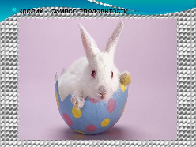 кролик – символ плодовитости