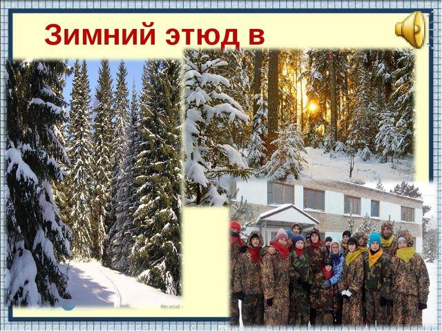 Зимний этюд в миноре