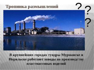 Тропинка размышлений В крупнейших городах тундры Мурманске и Норильске работа