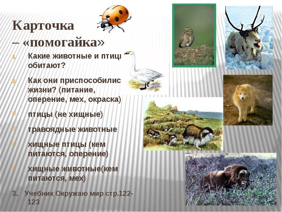 Карточка – «помогайка» Какие животные и птицы обитают? Как они приспособились...