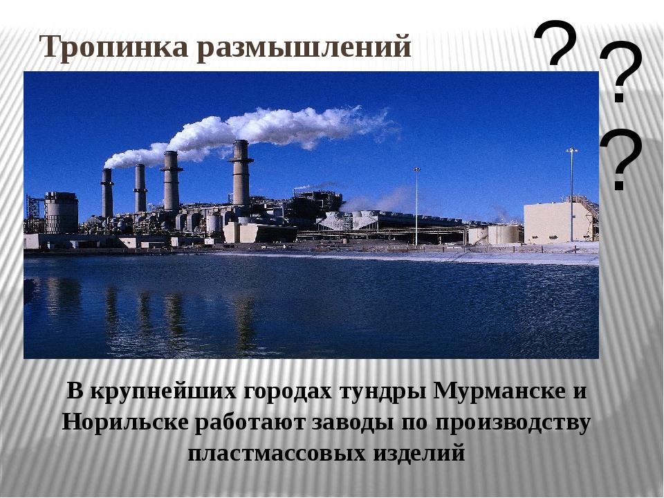 Тропинка размышлений В крупнейших городах тундры Мурманске и Норильске работа...