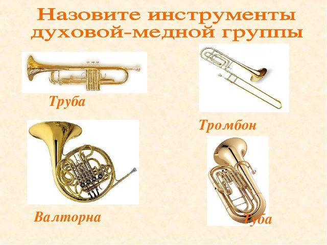 Труба Валторна Тромбон Туба