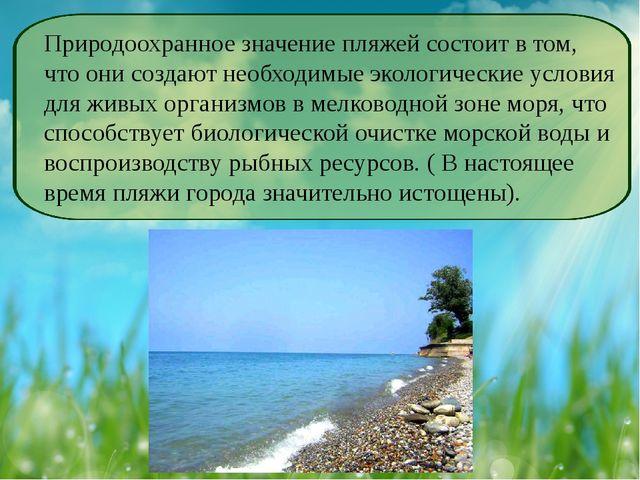 Природоохранное значение пляжей состоит в том, что они создают необходимые эк...