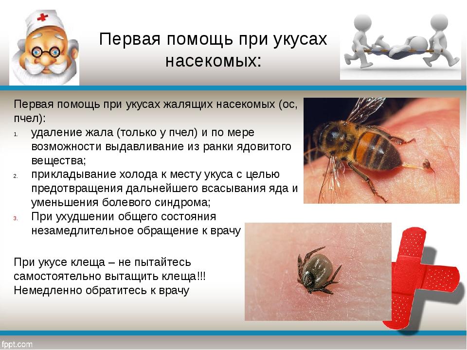 Первая помощь при укусах жалящих насекомых (ос, пчел): удаление жала (только...