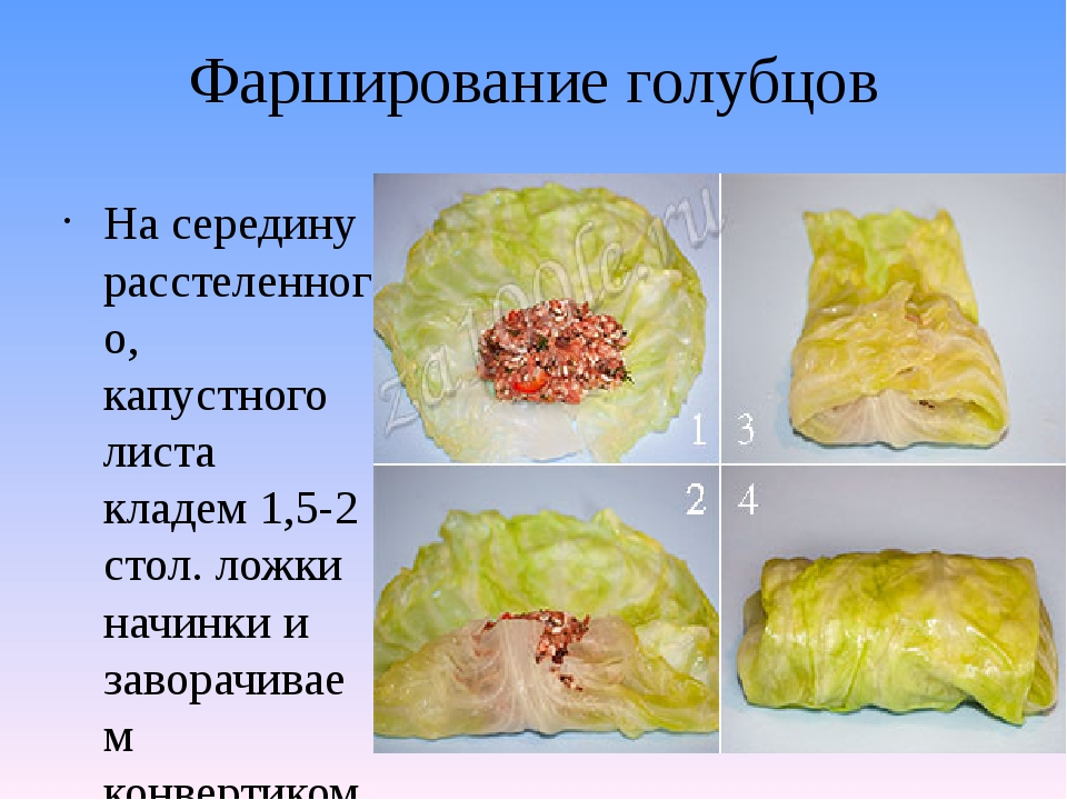 Фарширование голубцов На середину расстеленного, капустного листа кладем 1,5-...