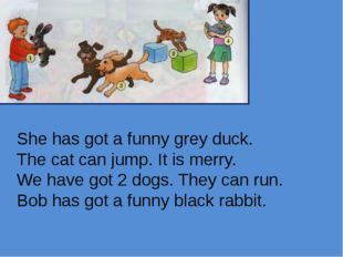 She has got a funny grey duck. The cat can jump. It is merry. We have got 2 d