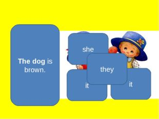 The dog is brown. she it it they