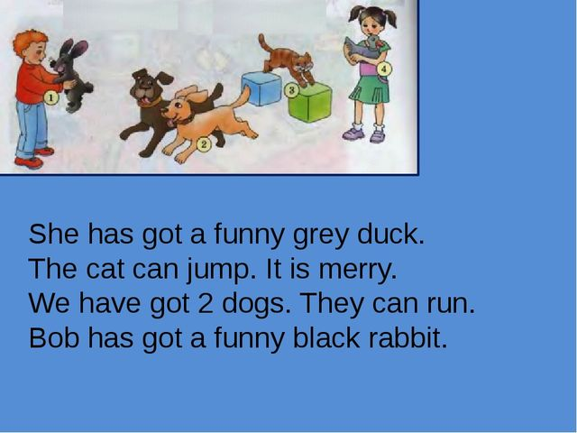 She has got a funny grey duck. The cat can jump. It is merry. We have got 2 d...