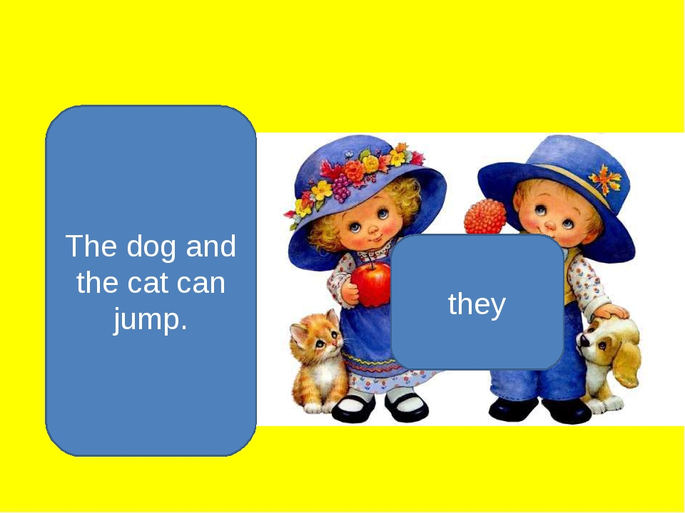 The dog and the cat can jump. they