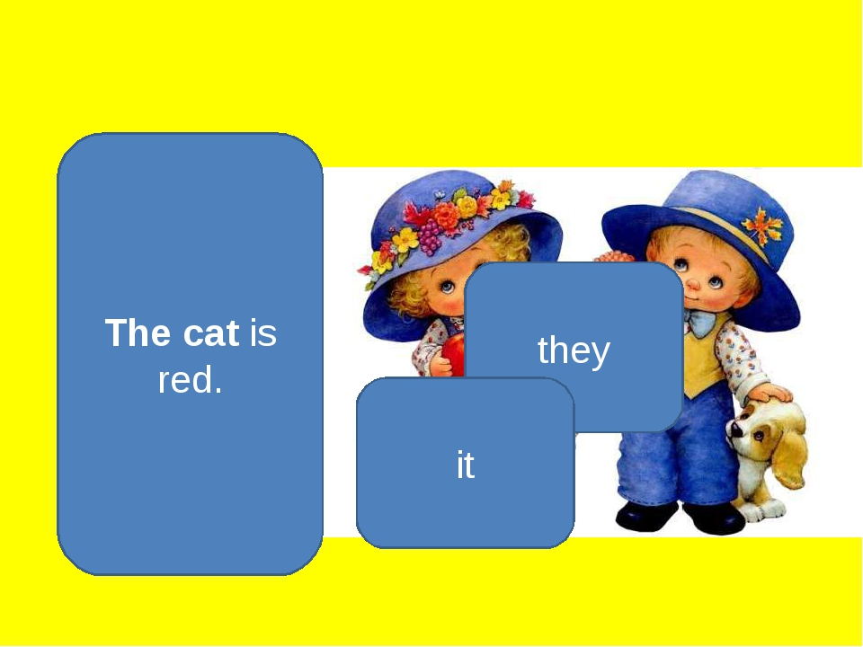Тhe cat is red. they it