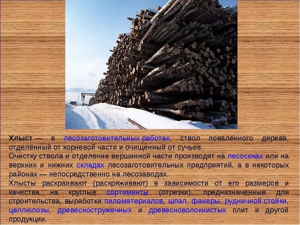 Хлыст— в лесозаготовительных работах, ствол поваленного дерева, отделённый о...