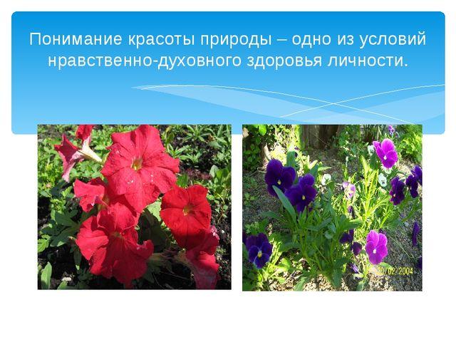 Понимание красоты природы – одно из условий нравственно-духовного здоровья ли...