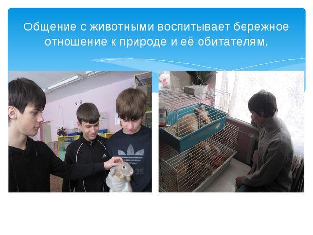 Общение с животными воспитывает бережное отношение к природе и её обитателям.