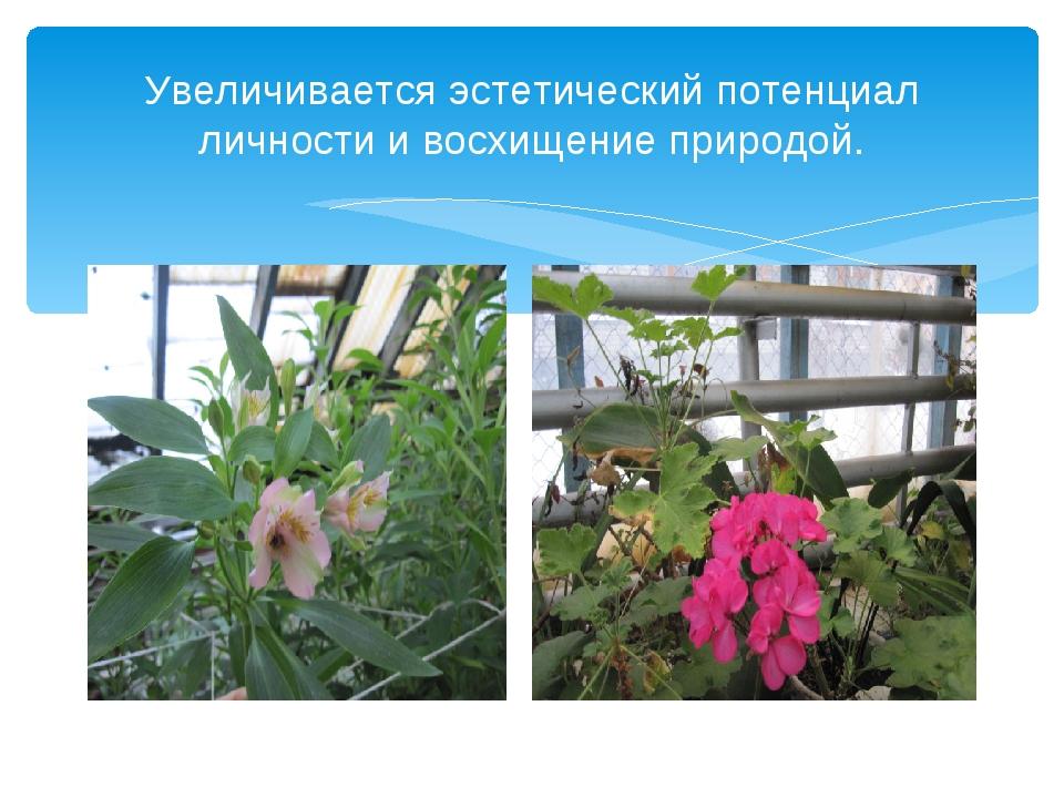 Увеличивается эстетический потенциал личности и восхищение природой.