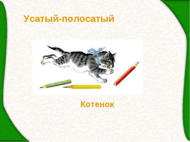 Усатый-полосатый Котенок